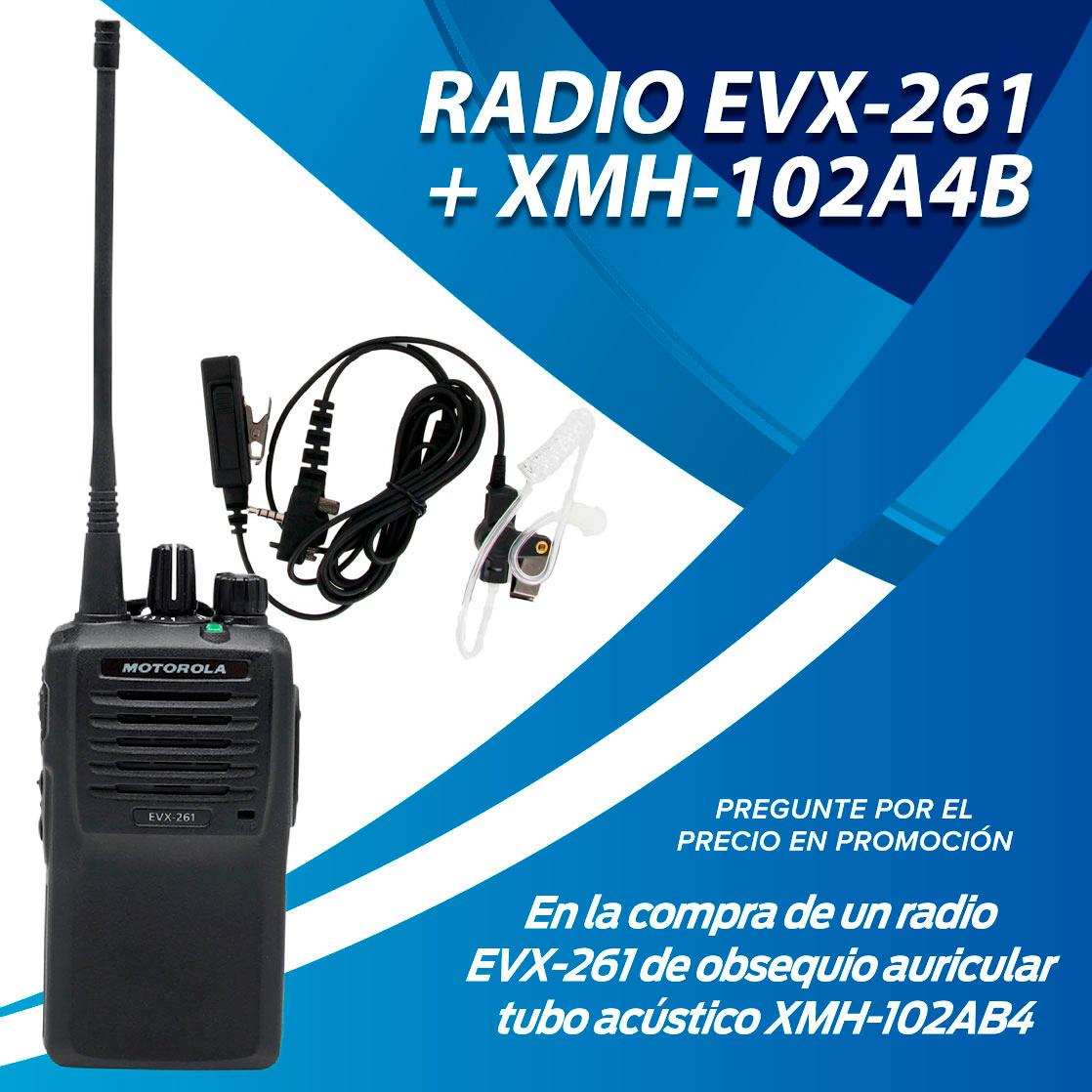 VX-261